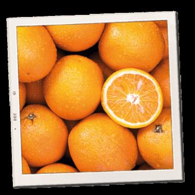 narandze